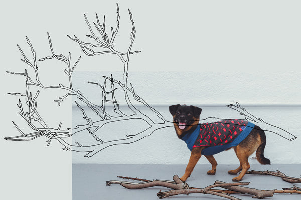 MAD ABOUT STICKS DOG JUMPER