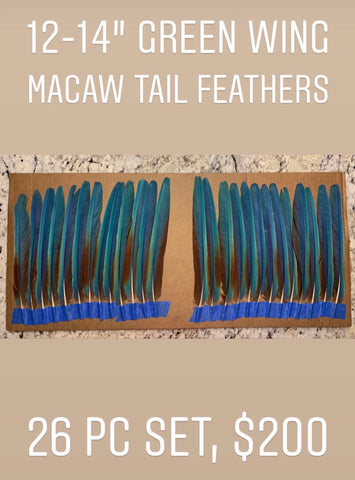 Aztec Dance Macaw Feather set 3