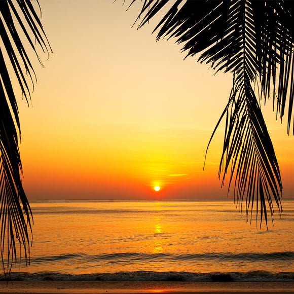 Tropical beach at beautiful sunset