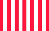 Red and White Stripe Print Photography Backdrop