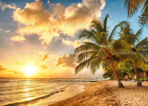 Barbados Shine Summer Theme Print Photography Backdrop