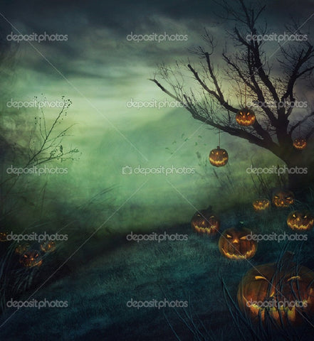 Grey Forest Pumpkin Indelible Print Fabric Backdrop