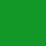 6m x 6m Chroma Key Green Screen Backdrop With Stand