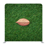 Leaf On Green Grass Backdrop