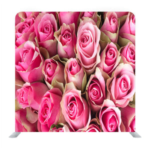 Natural Roses Background Media Wall