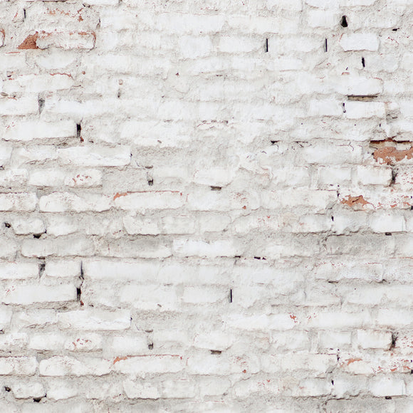 Old White Brick Wall Backdrop
