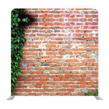 Red Brick wall with green lead Media wall