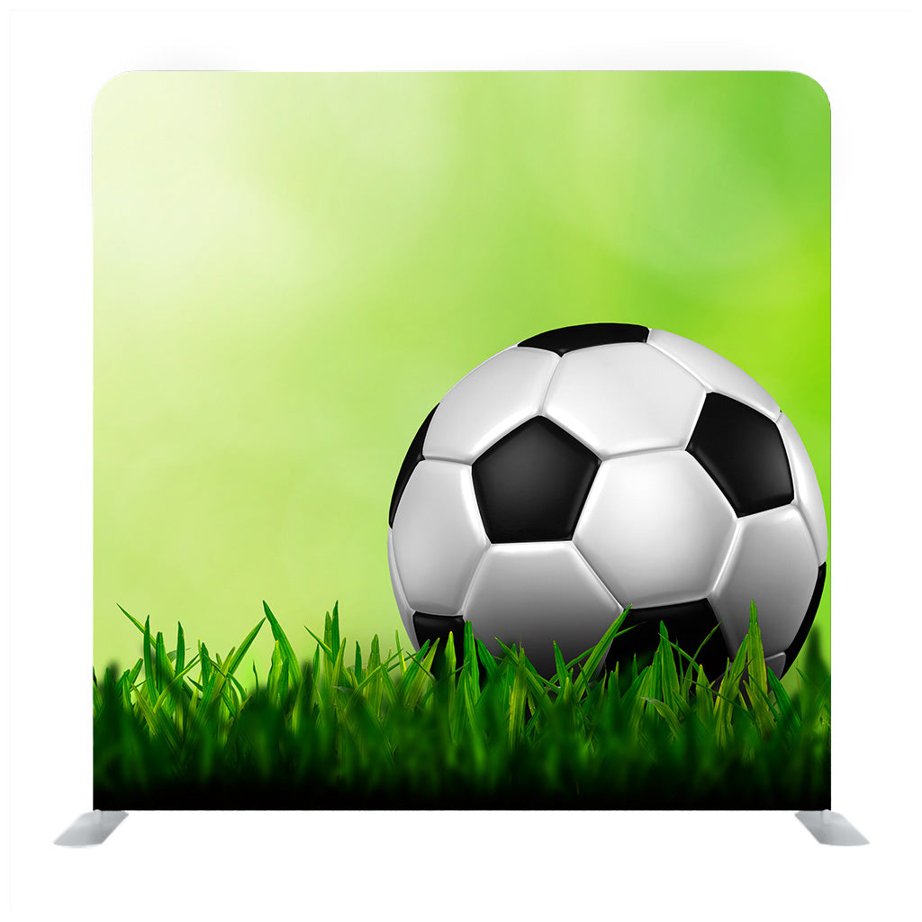 Soccer ball on grass Media wall
