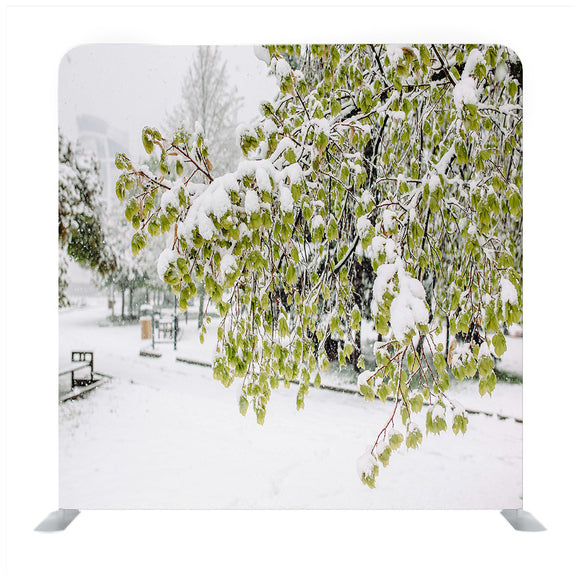 White Snow Covered Trees Media Wall