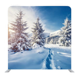 Winter Snow Trees Media Wall