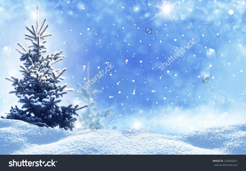 Winter Christmas Landscape Indelible Print Fabric Backdrop