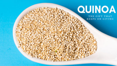 Quinoa is key for Paraben Free Vibrant Shiny and Nourished Hair