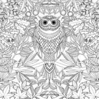 Coloring Book For Adults Secret Garden – Buynet