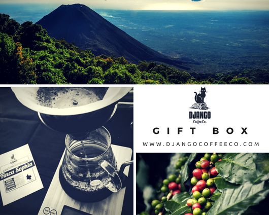 Gift Box - Django Coffee Co.  - 1