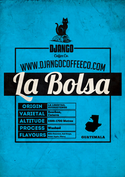 Guatemala La Bolsa - Django Coffee Co.