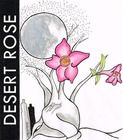 Desert Rose perfume oil
