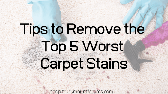 Top 5 Worst Carpet Stains