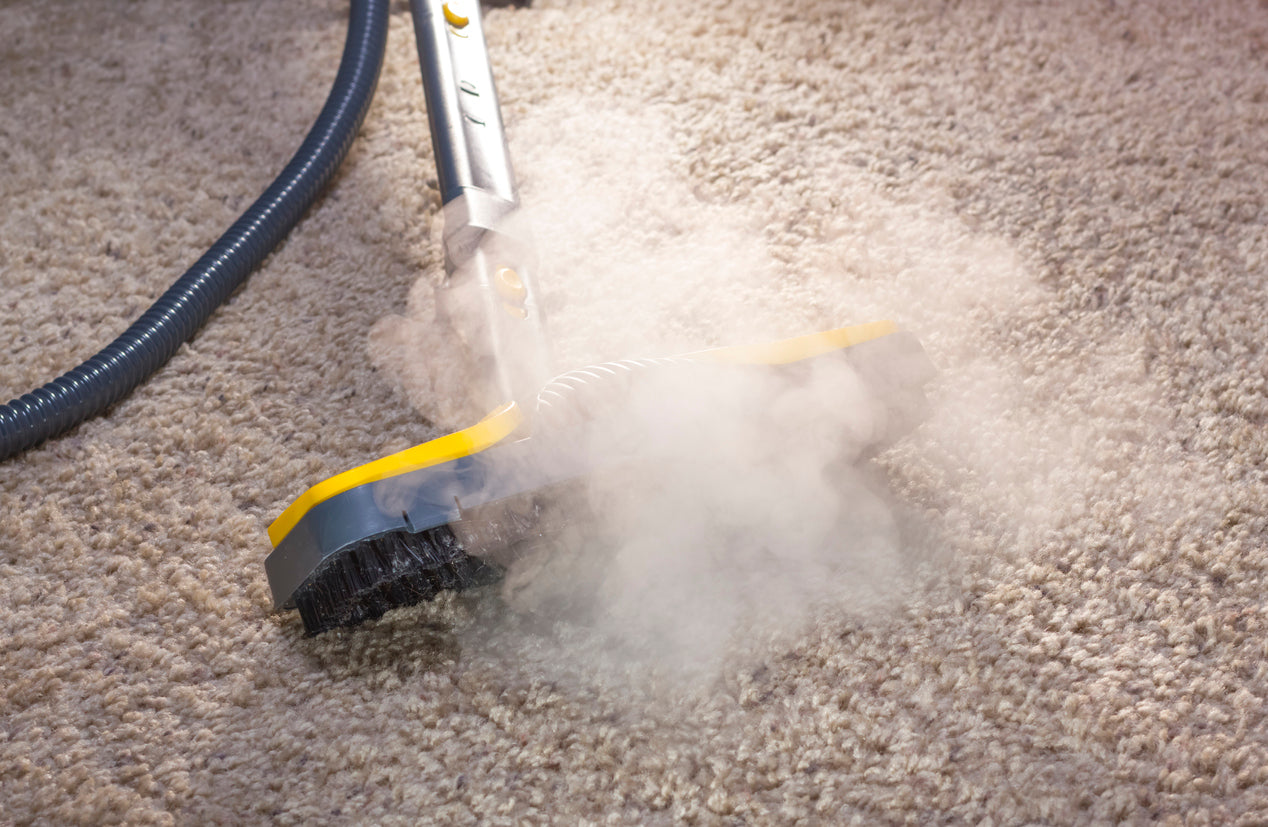 5 Commercial Carpet Cleaning Techniques Your Employees Need to Know