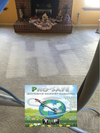 Case of PRO-SAFE *FREE SHIPPING* Ultimate Extreme Pre-Spray 'Eco-Friendly' - TMF Store: Carpet Cleaning Equipment & Chemicals from TruckMountForums