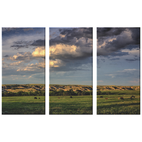 Badlands 3 Canvas  Set