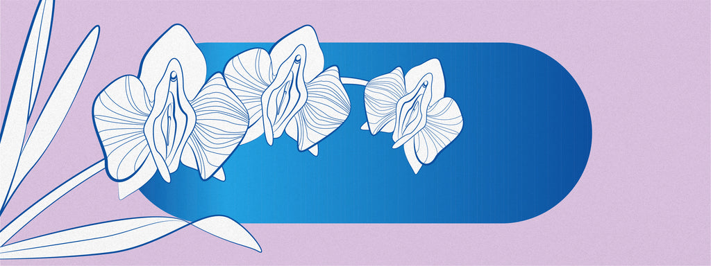 Three vulva shaped flowers are over a pink and blue background.