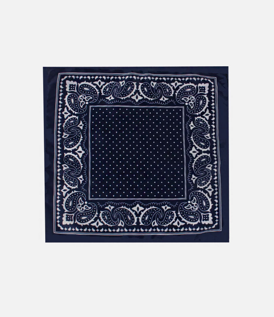 Blue & White Paisley Pocket Square - The Dapper Man