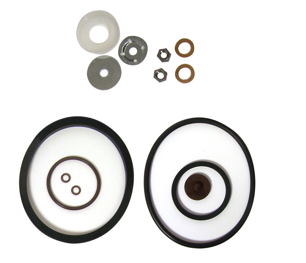 Chapin 1949 Spare - Viton Industrial Seal & Gasket Repair Kit
