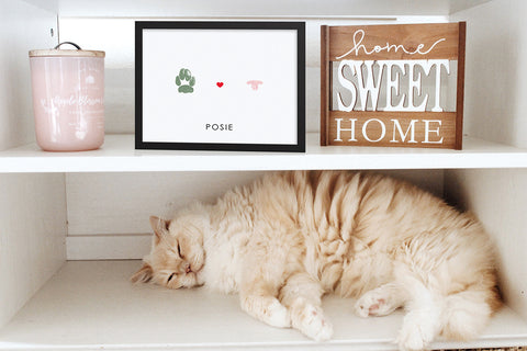 cat sleeping on shelf under personalized paw and nose print artwork