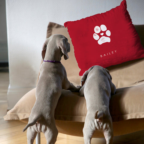 dogs looking at personalized paw print pillow