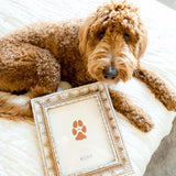 doodle dog with paw print artwork