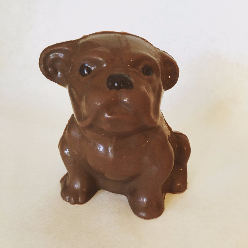 Chocolate Bulldog