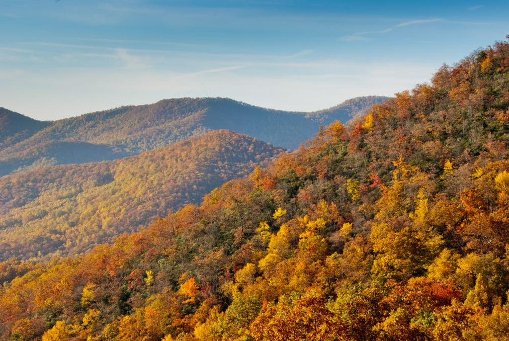5 Top Fall Camping Spots in North Carolina
