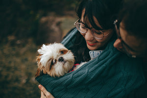 Practical Tips for Managing the To-Dos of Caring for a Sick or Elderly Dog