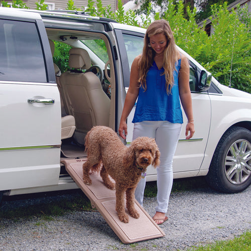 Indoor Bi-Fold Half Ramp, Tan