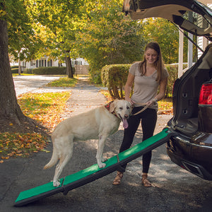 Tri-Fold Travel Lite Ramp with SupertraX