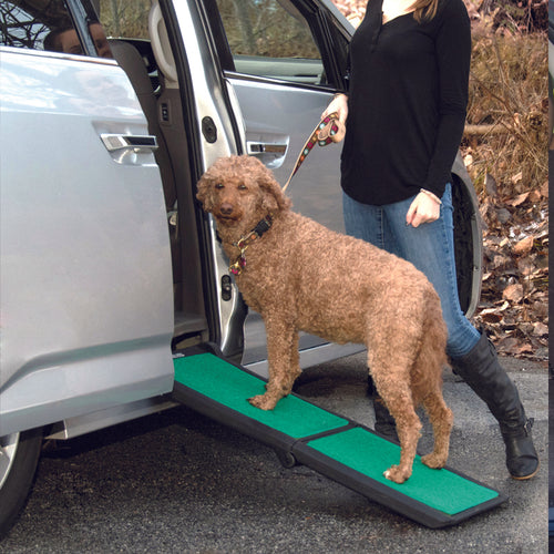 Bi-Fold Travel Lite Ramp with SupertraX