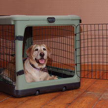 """The Other Door®"" Steel Crate, 36"", with Bolster Pad and Carrying Bag, Sage"