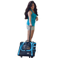 I-GO2 (Traveler) 5-in-1 Pet Carrier [Backpack/Tote/Roller Bag/Carrier/Car Seat], Ocean Blue