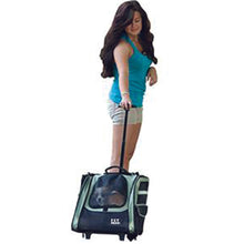 I-GO2 (Traveler) 5-in-1 Pet Carrier [Backpack/Tote/Roller Bag/Carrier/Car Seat], Sage