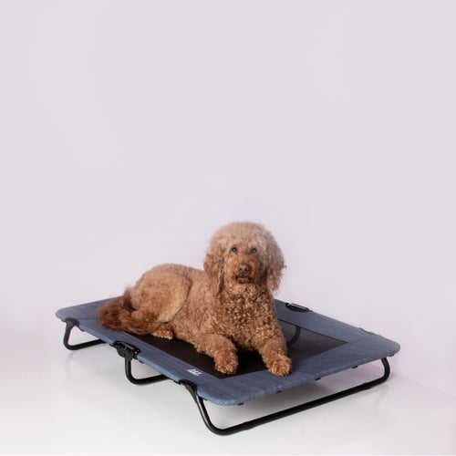 Lifestyle Pet Cot, 40