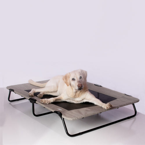 Lifestyle Pet Cot, 50