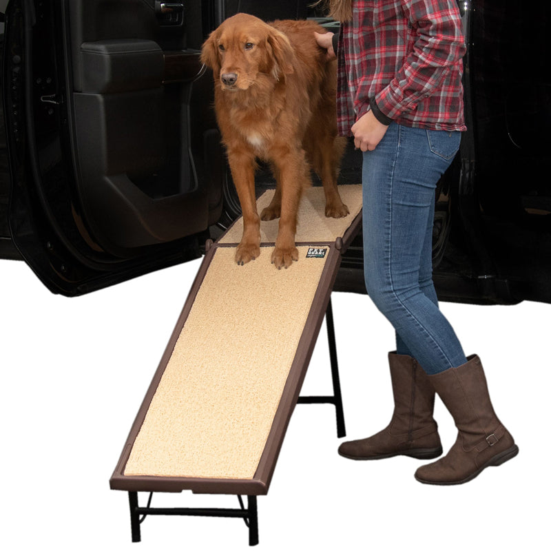 Ultra-Lite Free-Standing Ramp with Extension Panel