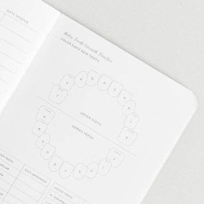 Baby Passport Journal