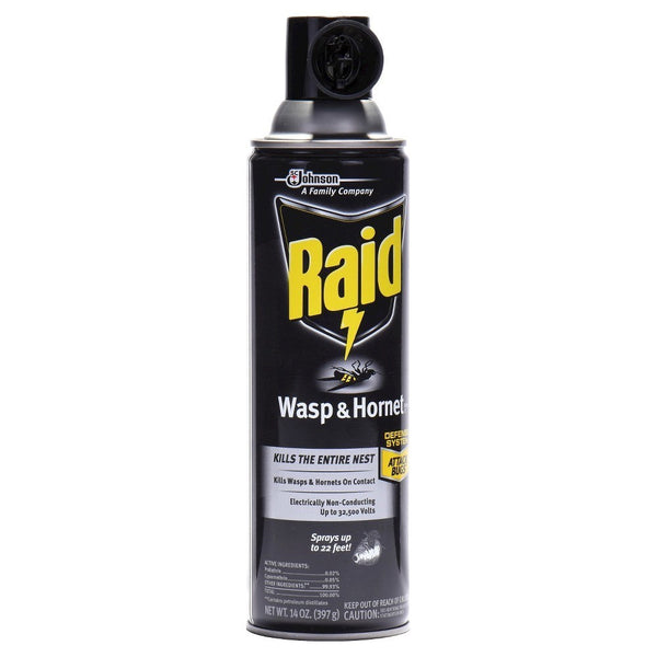 Raid Wasp & Hornet Killer 33 Spray, 14-Ounce