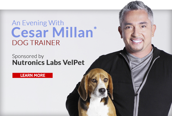 Endorsement-Lrg-Cesar Milan