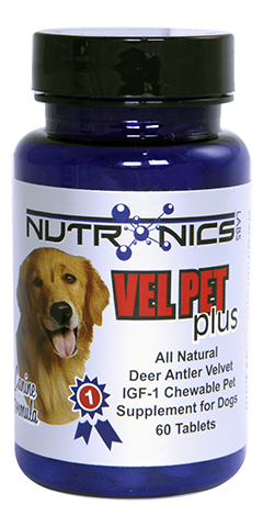 VelPet Plus: For Dogs