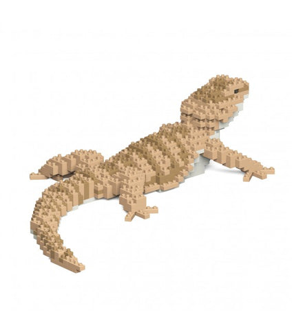 Bearded Dragon Jekca