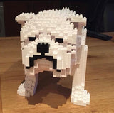 English Bulldog Jekca