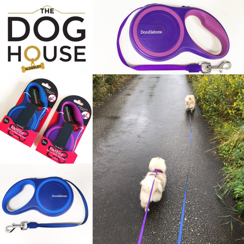 Doodlebone Rambler Retractable Lead