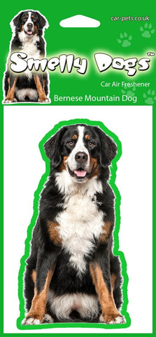 Bernese Mountain Dog Air Freshener